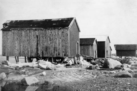 Gamle brygger ved Hesstunsjøen, i dag er det bare Harald-brygga helt til høyre som står igjen. Den kan vi nå kalle Hoen-brygga!
