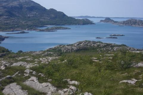 10. Utsikt sørover fra Vågsfjellet. Foto: Svein O. Pedersen